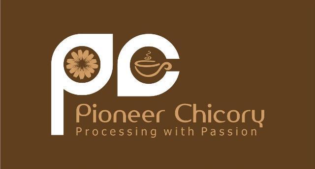 Pioneer Chicory