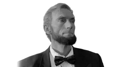 Abe lincoln Gutter Cleani